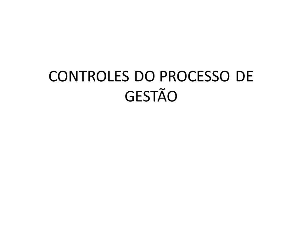 CONTROLES DO PROCESSO DE GESTÃO