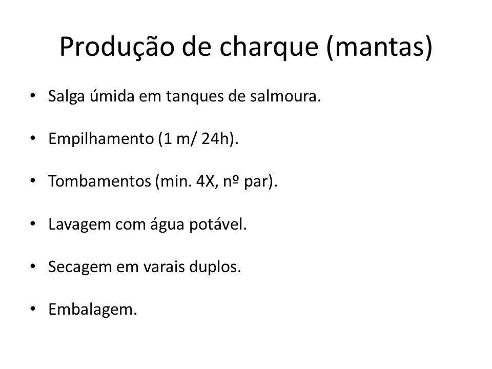 Produção de charque (mantas)
