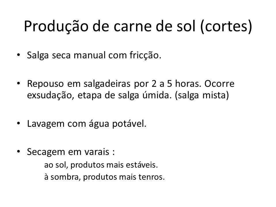 Produção de carne de sol (cortes)