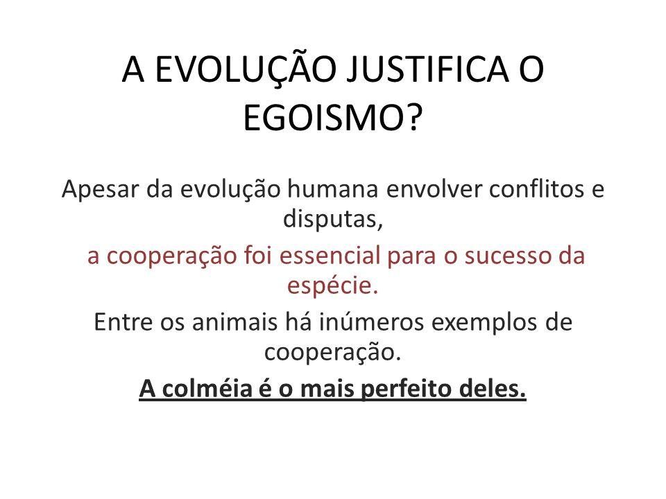 A EVOLUÇÃO JUSTIFICA O EGOISMO