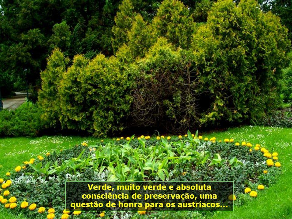 Verde, muito verde e absoluta consciência de preservação, uma questão de honra para os austríacos...