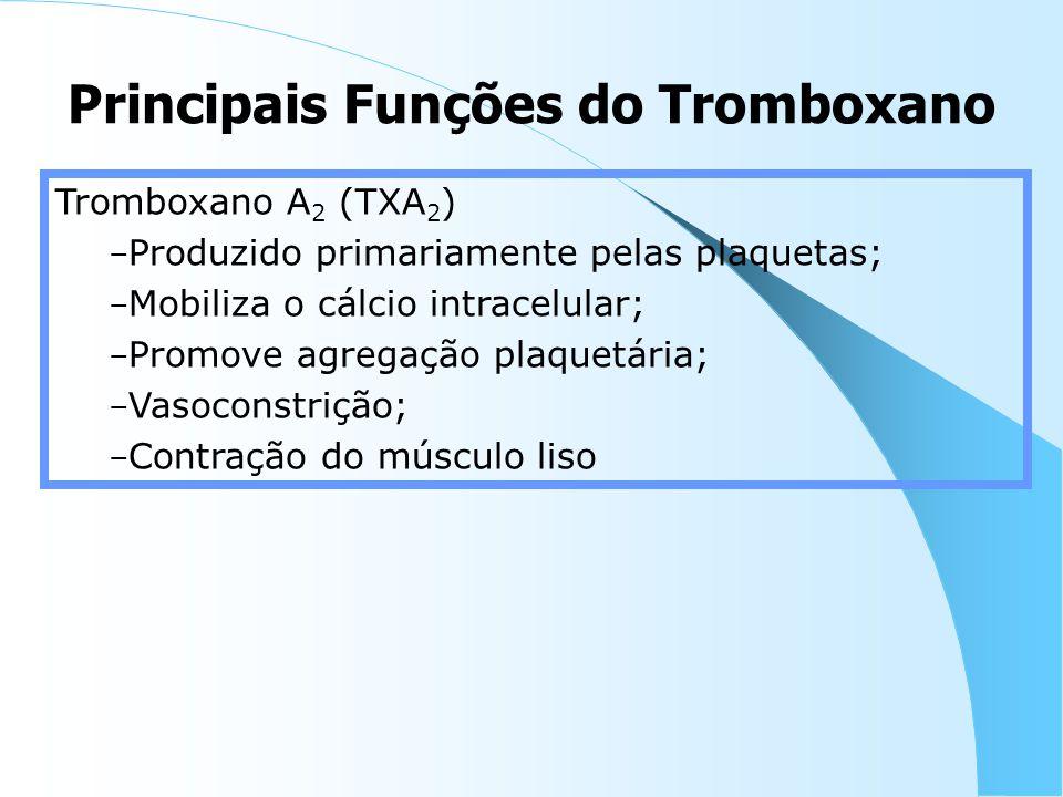 Principais Funções do Tromboxano