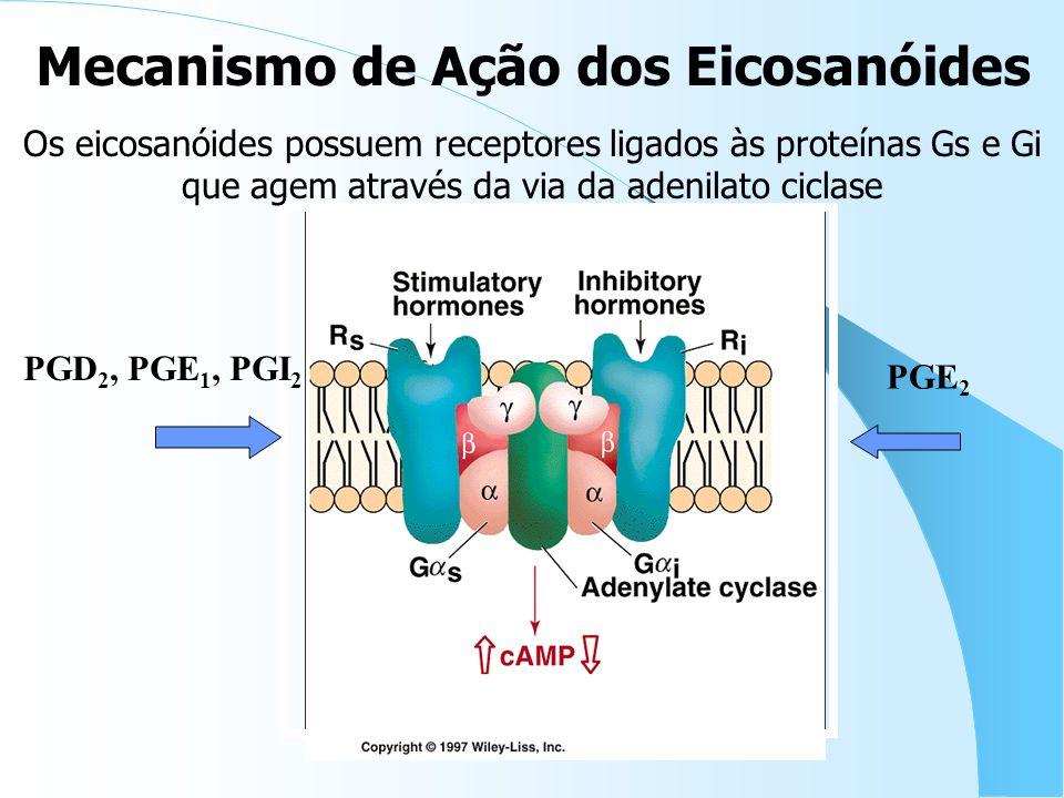 Mecanismo de Ação dos Eicosanóides
