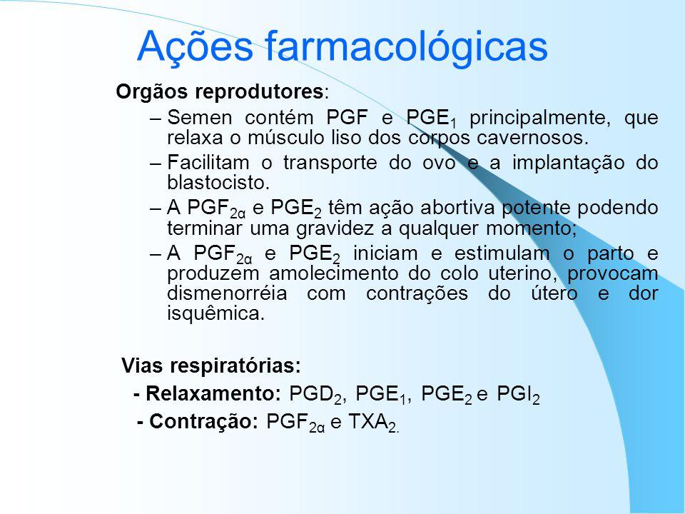 Ações farmacológicas Orgãos reprodutores: Semen contém PGF e PGE1 principalmente, que relaxa o músculo liso dos corpos cavernosos.