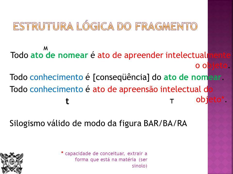 Estrutura lógica do fragmento