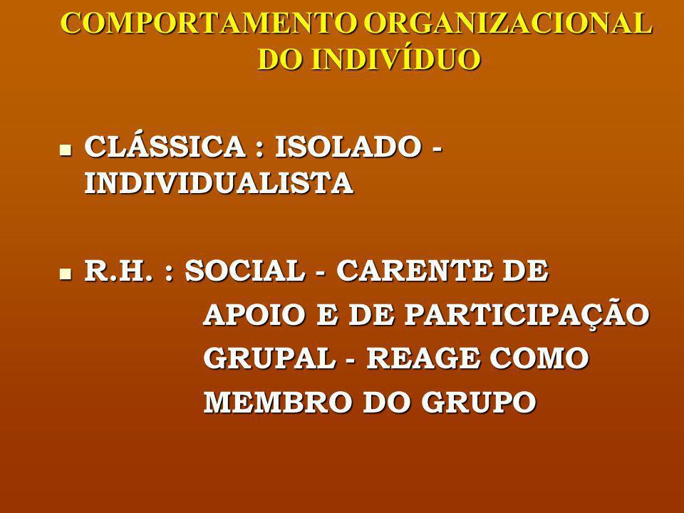 COMPORTAMENTO ORGANIZACIONAL DO INDIVÍDUO