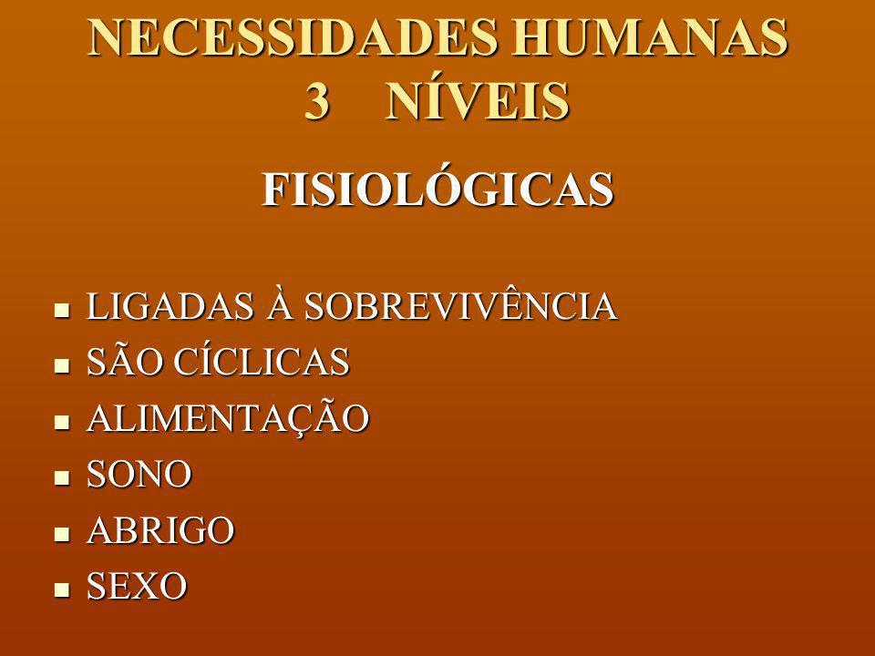 NECESSIDADES HUMANAS 3 NÍVEIS