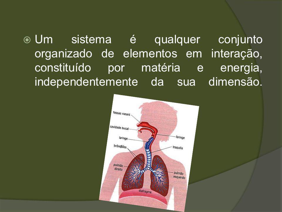 Um sistema é qualquer conjunto organizado de elementos em interação, constituído por matéria e energia, independentemente da sua dimensão.