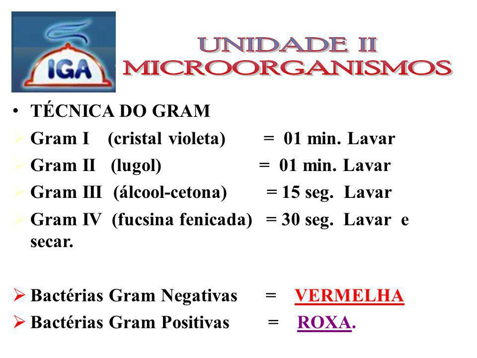 UNIDADE II MICROORGANISMOS TÉCNICA DO GRAM