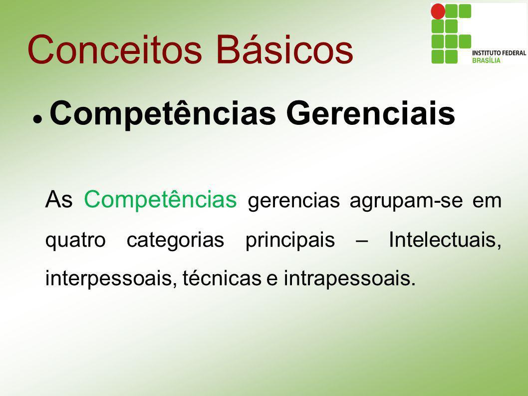 Conceitos Básicos Competências Gerenciais