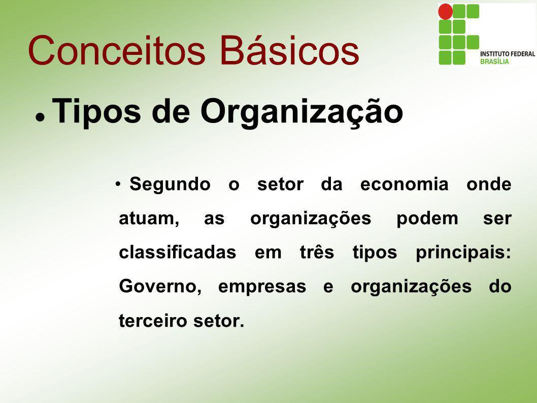 Conceitos Básicos Tipos de Organização