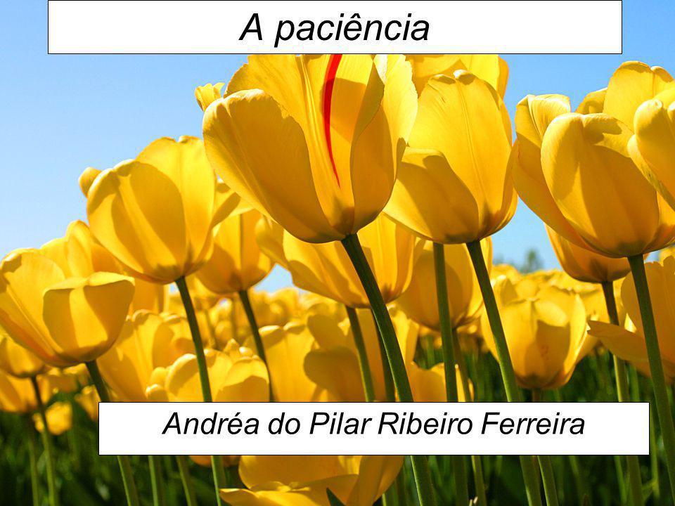 Andréa do Pilar Ribeiro Ferreira