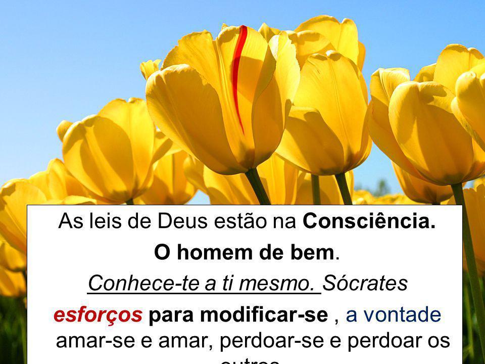 As leis de Deus estão na Consciência. O homem de bem.
