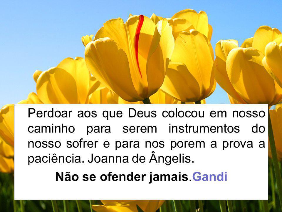 Perdoar aos que Deus colocou em nosso caminho para serem instrumentos do nosso sofrer e para nos porem a prova a paciência. Joanna de Ângelis.