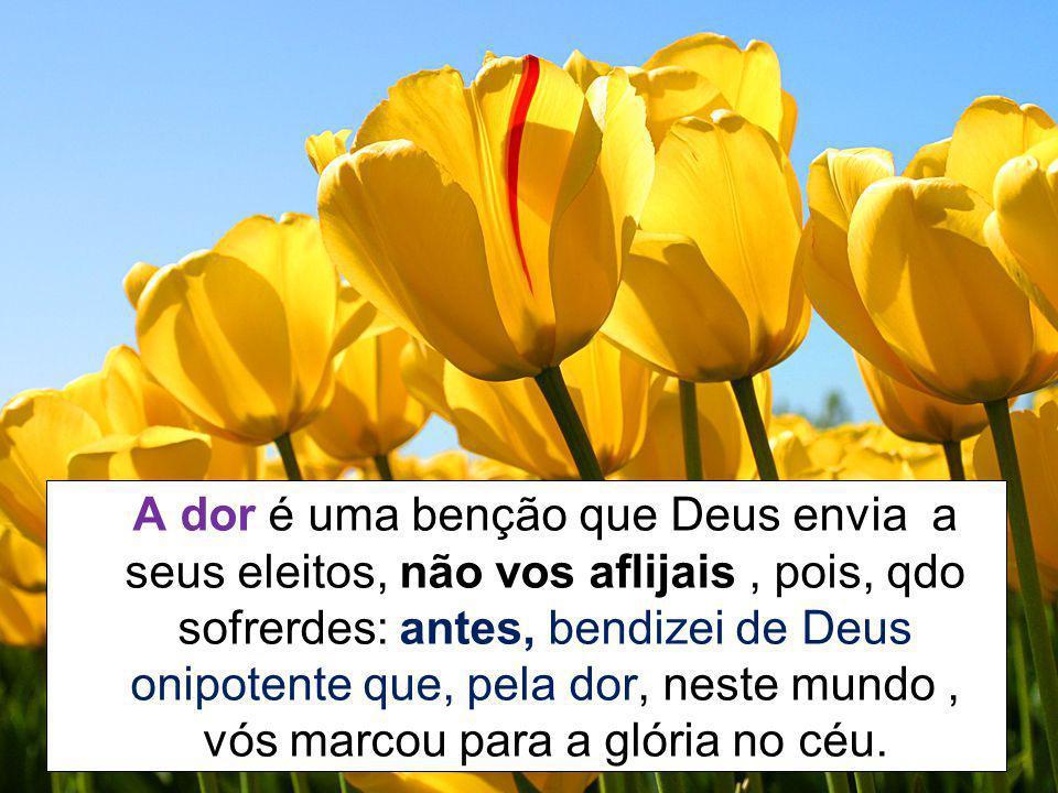 A dor é uma benção que Deus envia a seus eleitos, não vos aflijais , pois, qdo sofrerdes: antes, bendizei de Deus onipotente que, pela dor, neste mundo , vós marcou para a glória no céu.