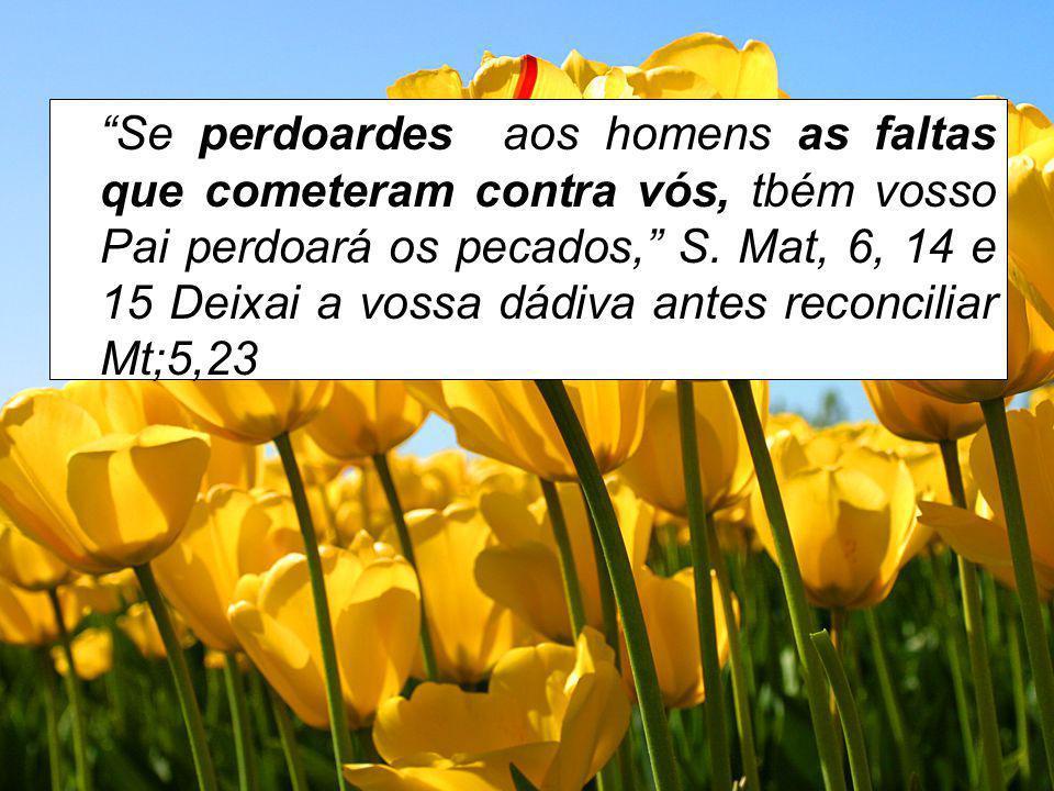 Se perdoardes aos homens as faltas que cometeram contra vós, tbém vosso Pai perdoará os pecados, S.