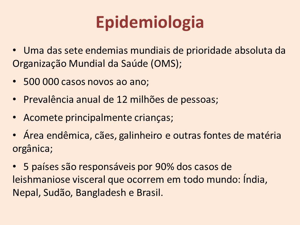 Epidemiologia Uma das sete endemias mundiais de prioridade absoluta da Organização Mundial da Saúde (OMS);