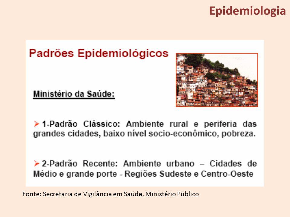 Epidemiologia Fonte: Secretaria de Vigilância em Saúde, Ministério Público