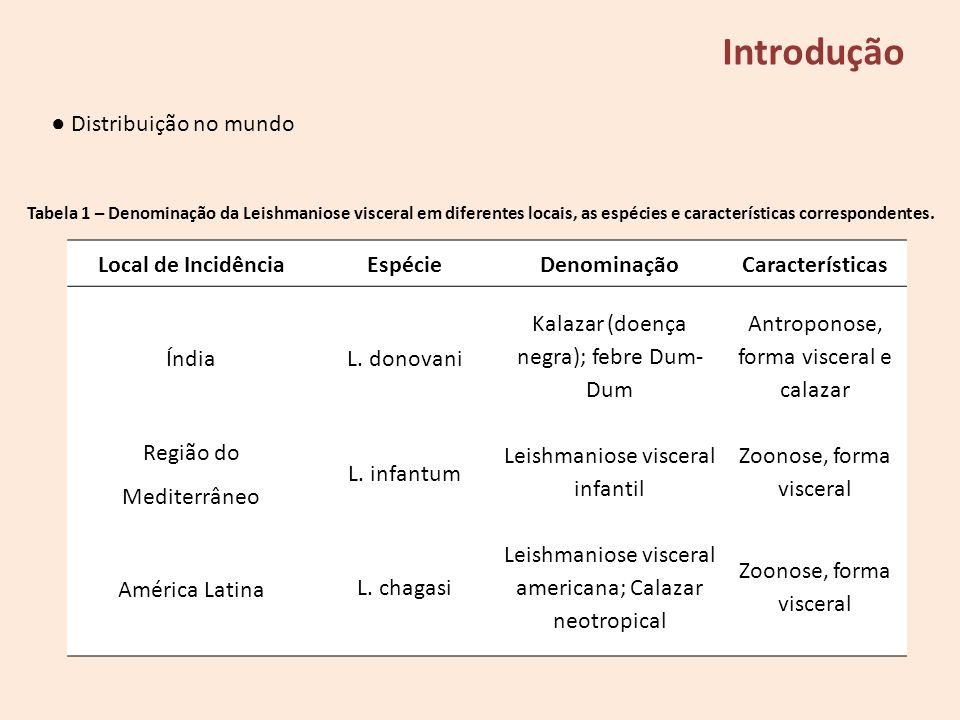 Introdução ● Distribuição no mundo Local de Incidência Espécie