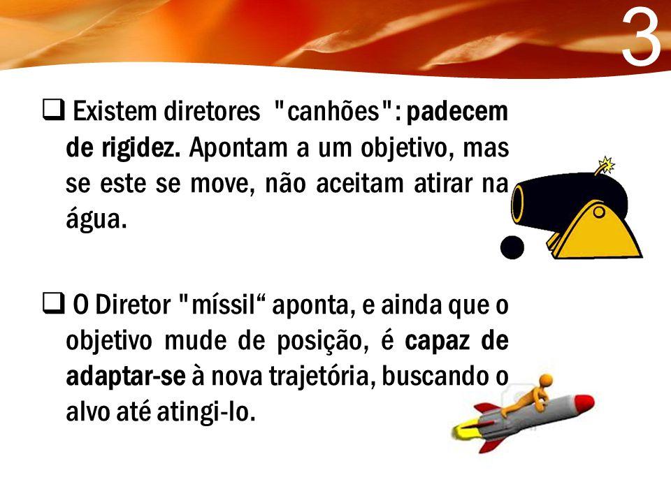 3 Existem diretores canhões : padecem de rigidez. Apontam a um objetivo, mas se este se move, não aceitam atirar na água.