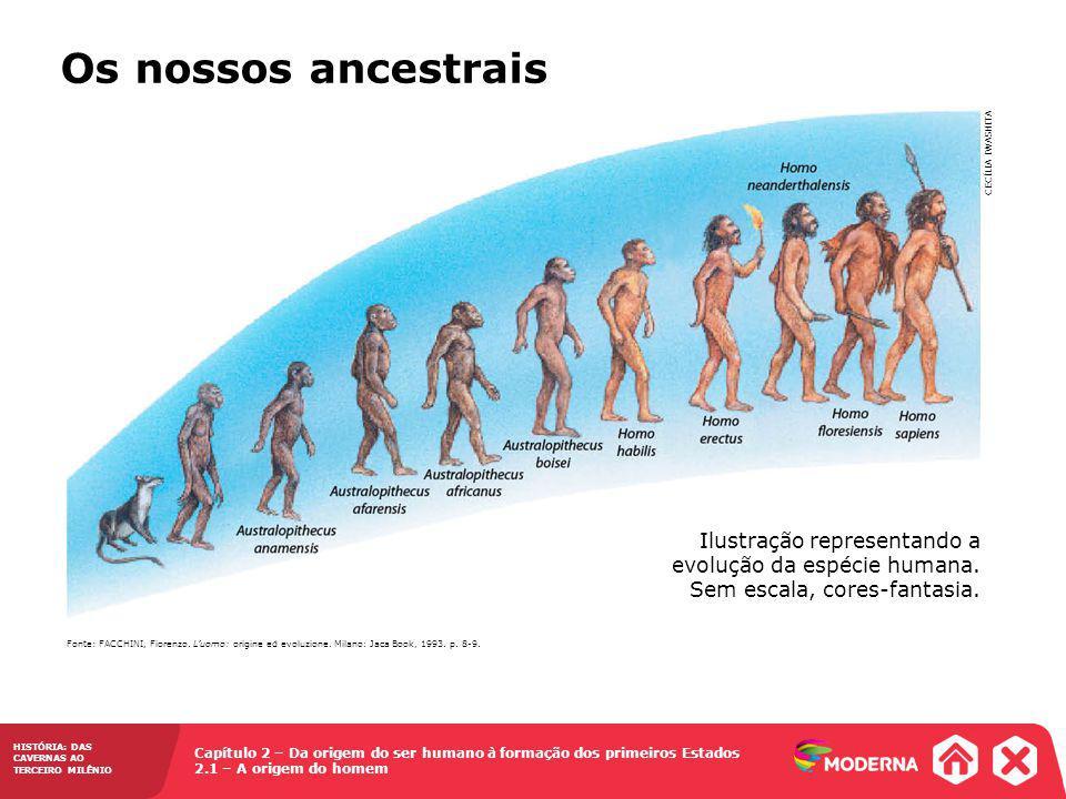 Os nossos ancestrais CECÍLIA IWASHITA. Ilustração representando a evolução da espécie humana. Sem escala, cores-fantasia.