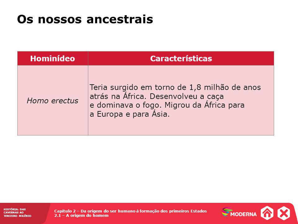 Os nossos ancestrais Hominídeo Características Homo erectus