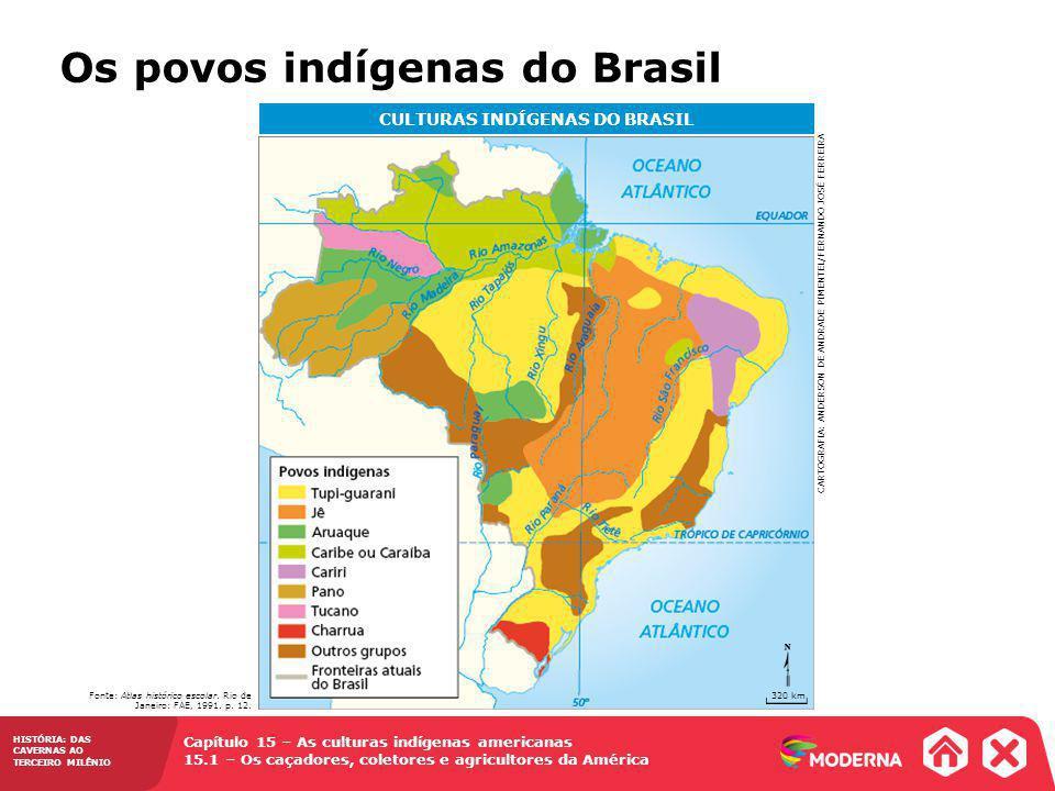 CULTURAS INDÍGENAS DO BRASIL