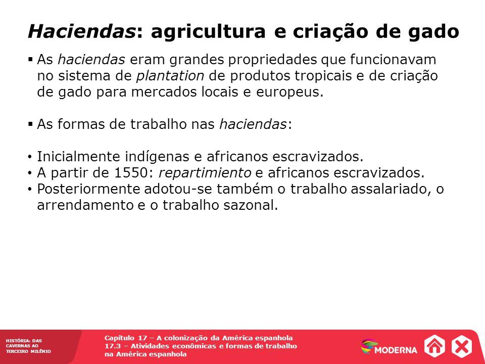 Haciendas: agricultura e criação de gado