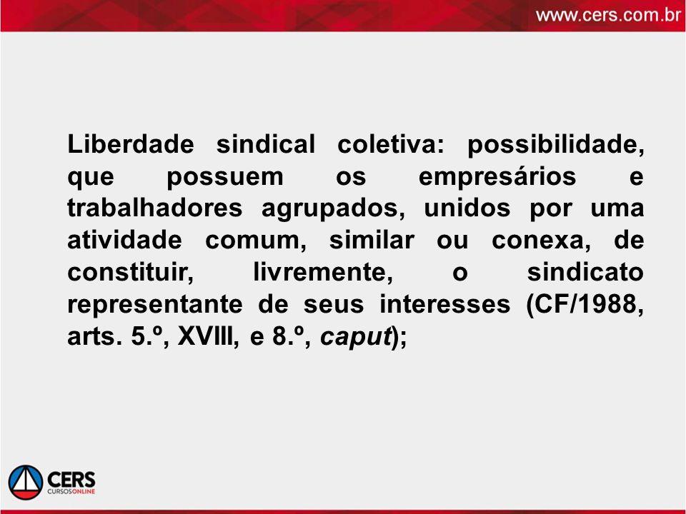 Liberdade sindical coletiva: possibilidade, que possuem os empresários e trabalhadores agrupados, unidos por uma atividade comum, similar ou conexa, de constituir, livremente, o sindicato representante de seus interesses (CF/1988, arts.
