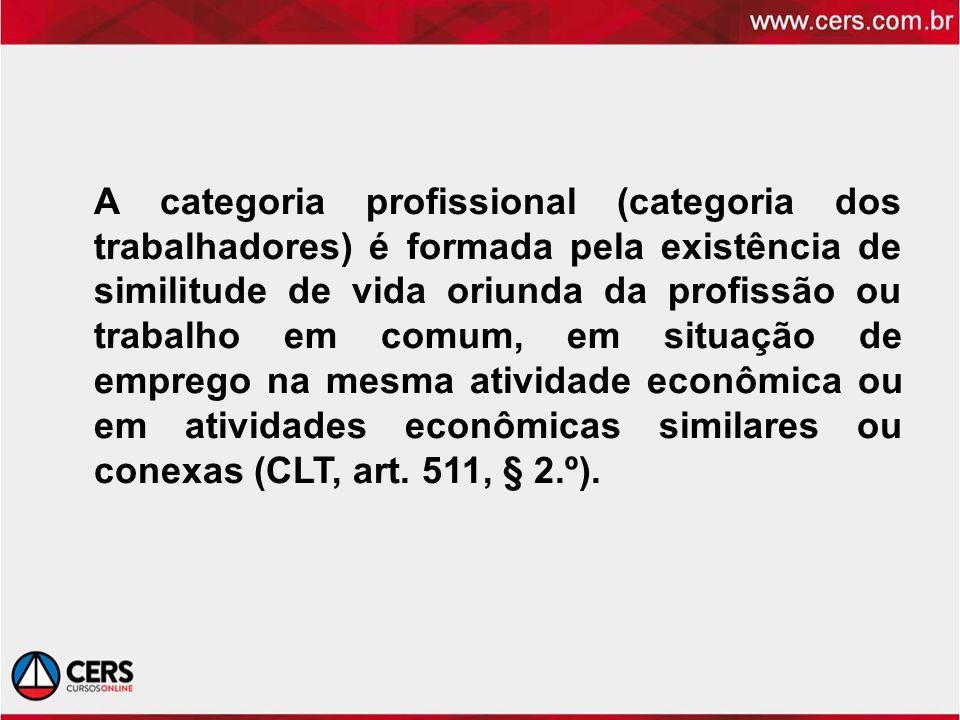 A categoria profissional (categoria dos trabalhadores) é formada pela existência de similitude de vida oriunda da profissão ou trabalho em comum, em situação de emprego na mesma atividade econômica ou em atividades econômicas similares ou conexas (CLT, art.