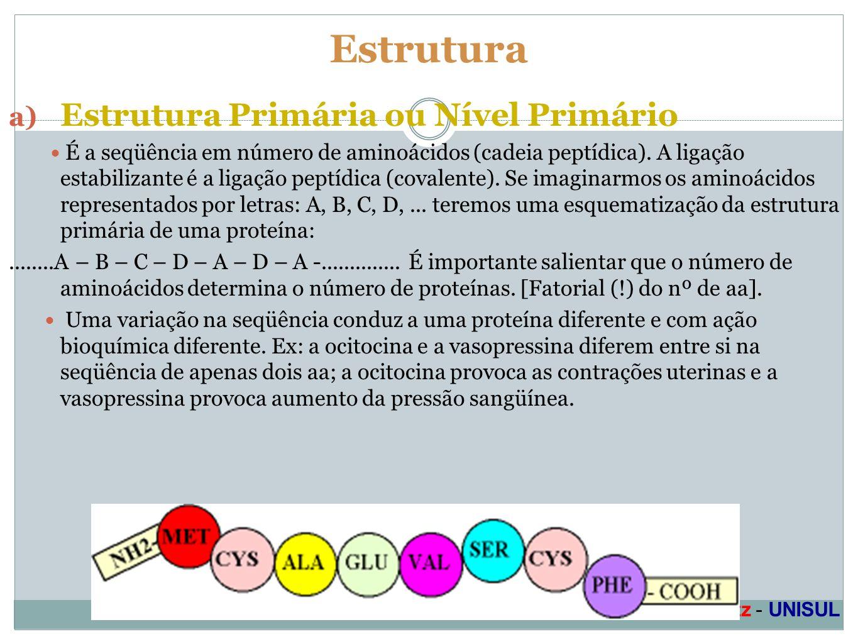 Estrutura Estrutura Primária ou Nível Primário