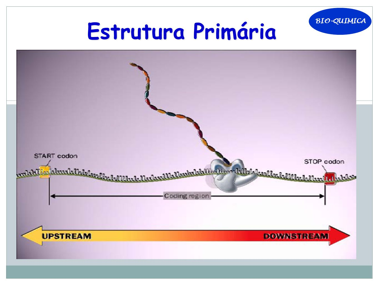 BIO-QUIMICA Estrutura Primária