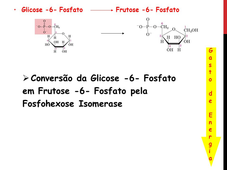 Glicose -6- Fosfato Frutose -6- Fosfato