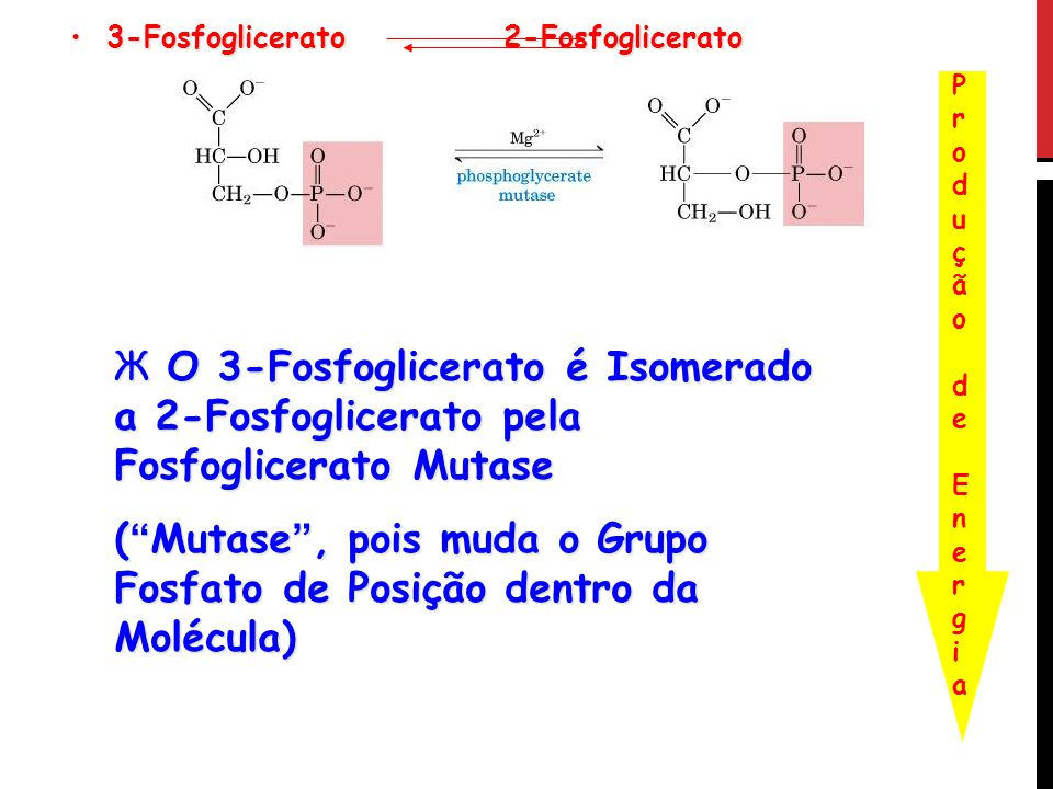 ( Mutase , pois muda o Grupo Fosfato de Posição dentro da Molécula)