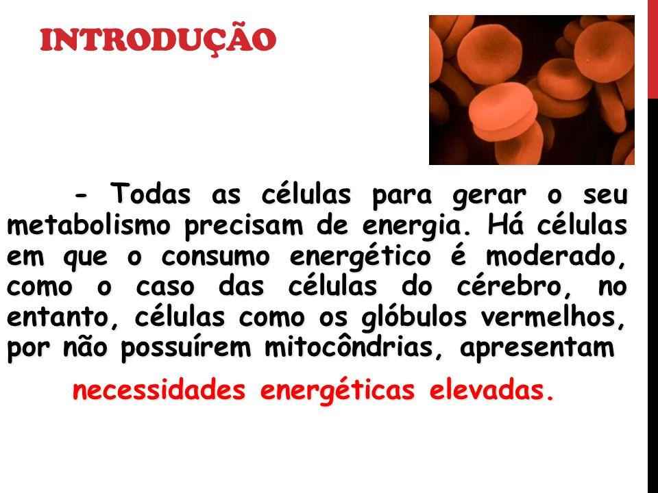 Introdução necessidades energéticas elevadas.