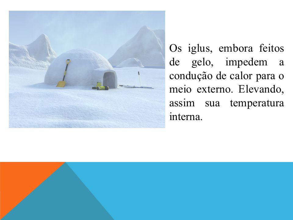 Os iglus, embora feitos de gelo, impedem a condução de calor para o meio externo.
