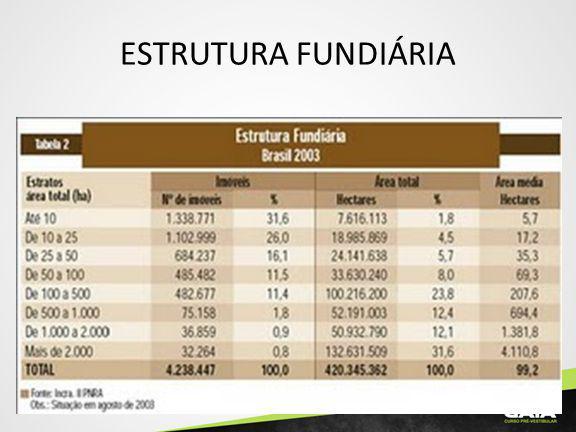 ESTRUTURA FUNDIÁRIA