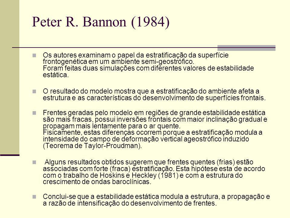 Peter R. Bannon (1984)