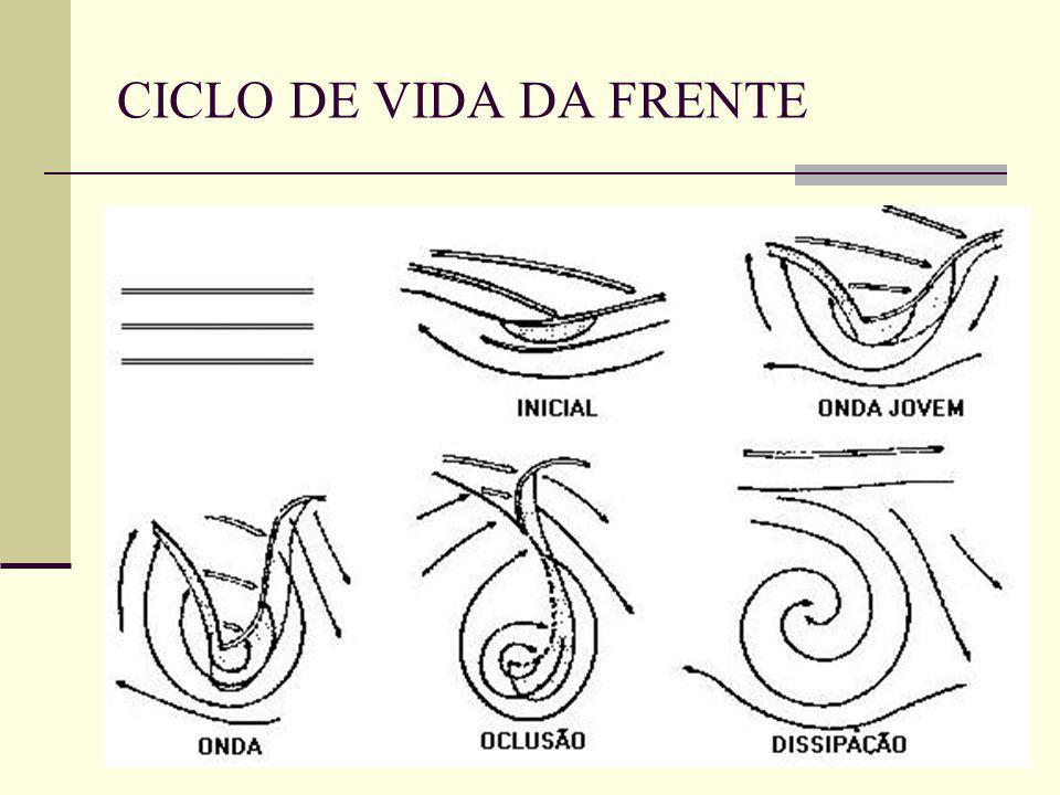 CICLO DE VIDA DA FRENTE