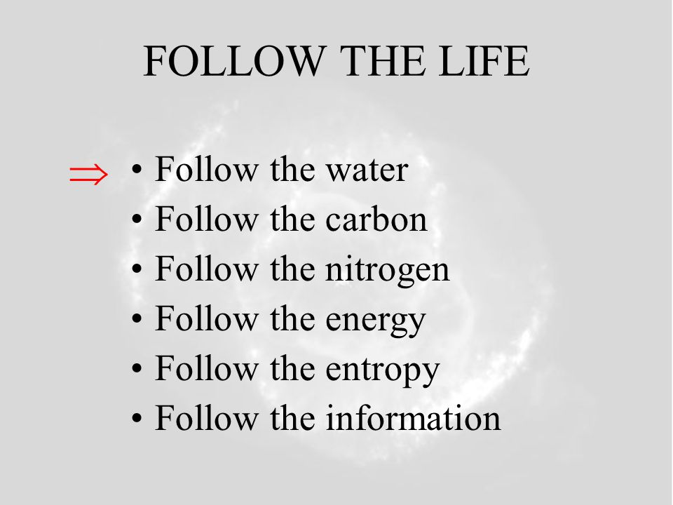 FOLLOW THE LIFE  Follow the water Follow the carbon