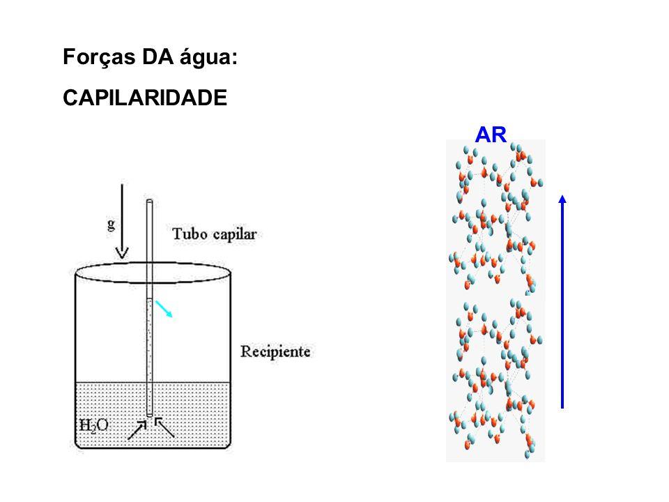 Forças DA água: CAPILARIDADE AR