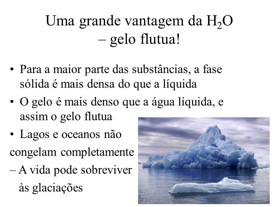Uma grande vantagem da H2O – gelo flutua!