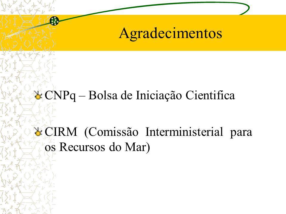 Agradecimentos CNPq – Bolsa de Iniciação Cientifica