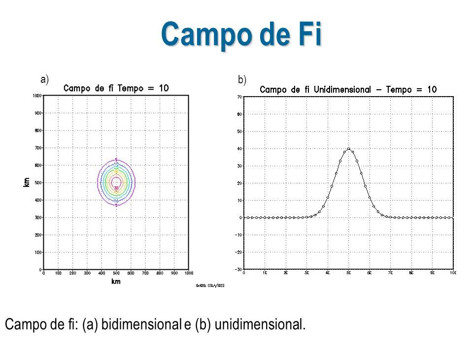 Campo de Fi a) b) Campo de fi: (a) bidimensional e (b) unidimensional.