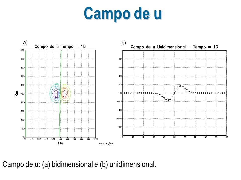 Campo de u a) b) Campo de u: (a) bidimensional e (b) unidimensional.