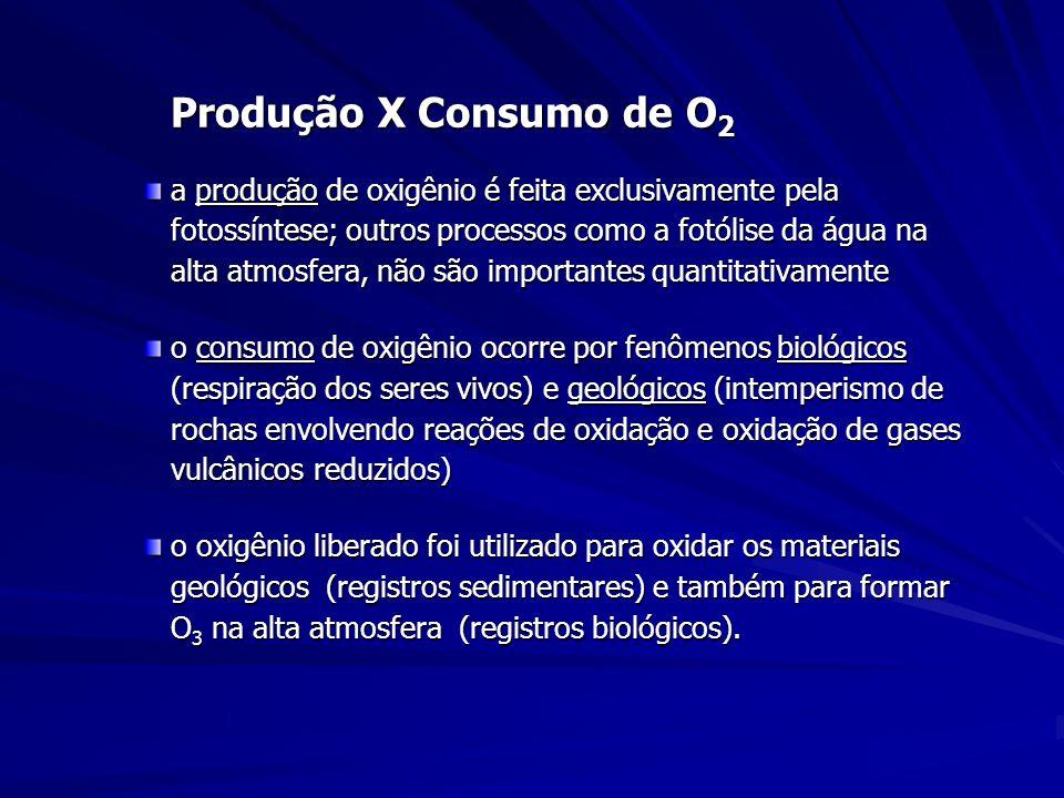 Produção X Consumo de O2