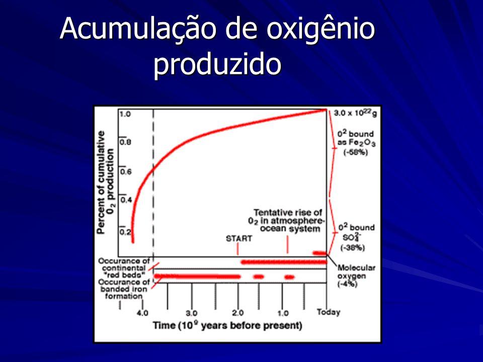 Acumulação de oxigênio produzido