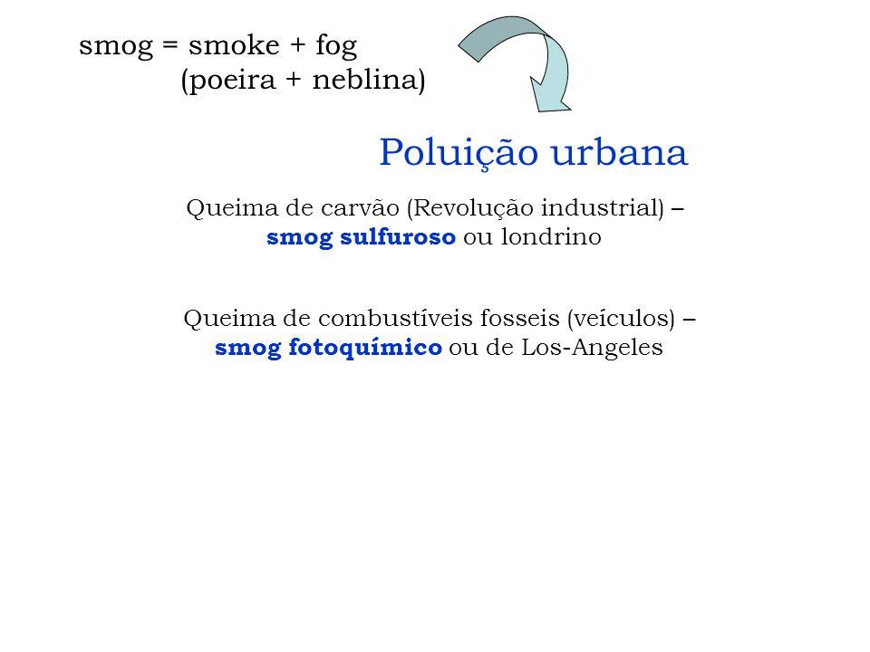 Poluição urbana smog = smoke + fog (poeira + neblina)