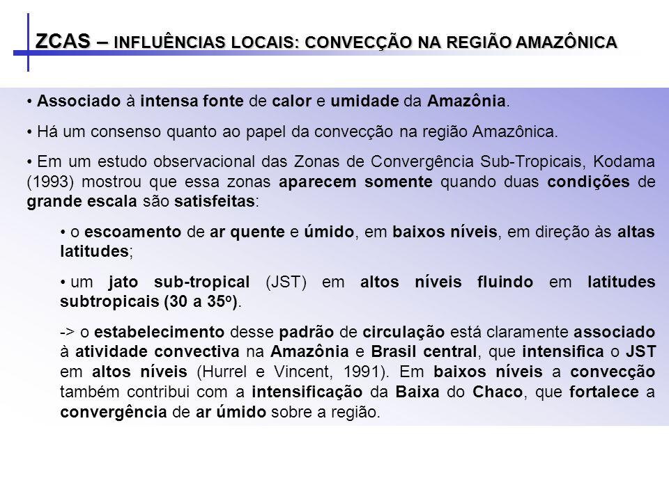 ZCAS – INFLUÊNCIAS LOCAIS: CONVECÇÃO NA REGIÃO AMAZÔNICA