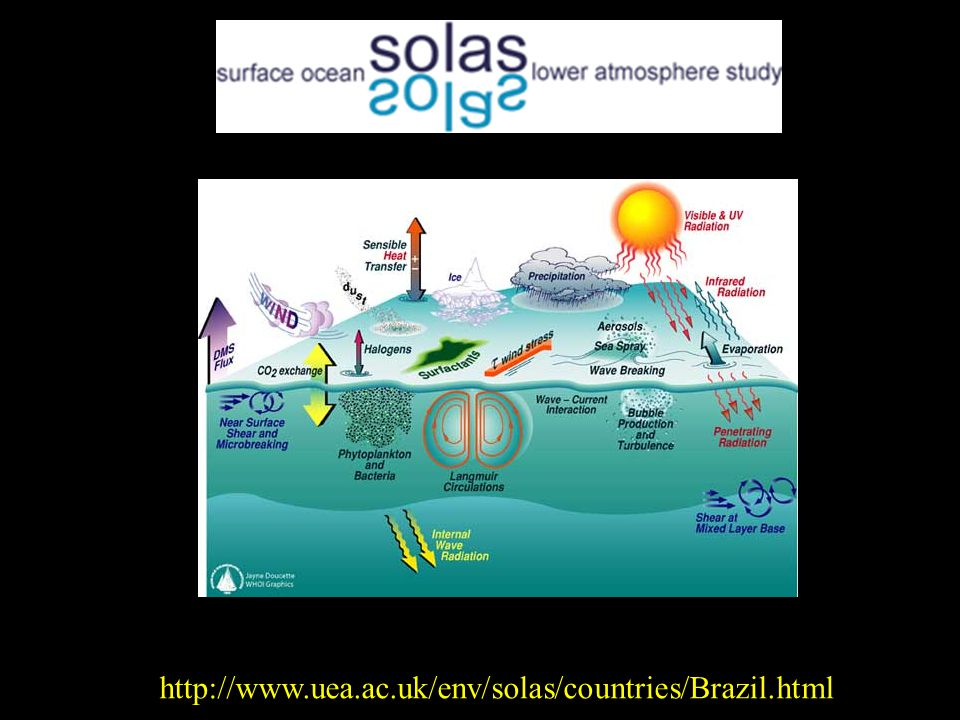 http://www.uea.ac.uk/env/solas/countries/Brazil.html